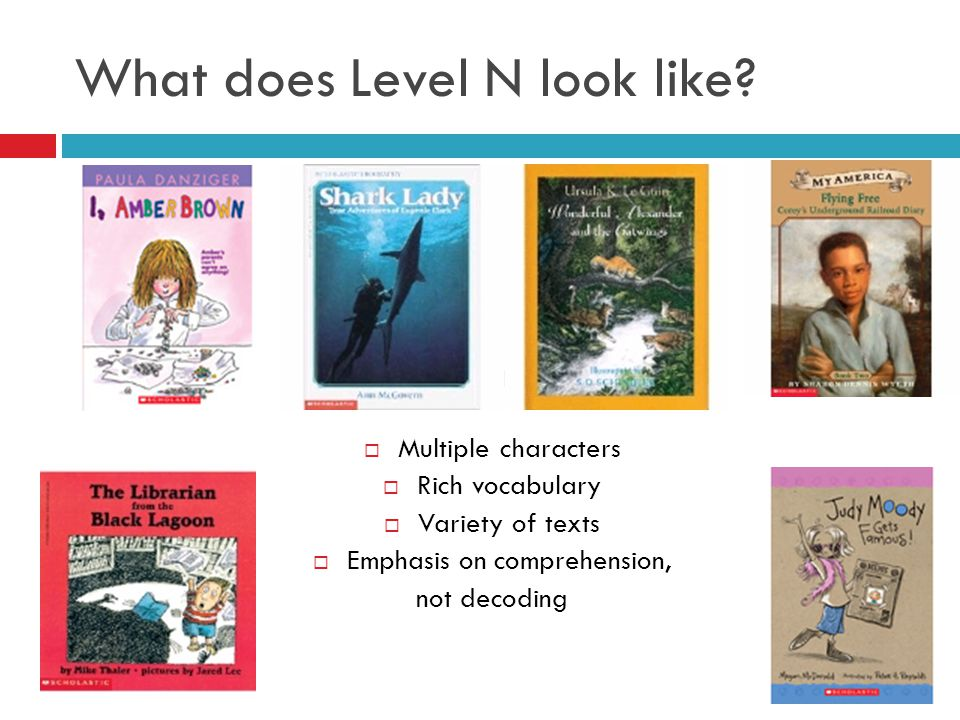 What does Level N look like?  Chapters  Multiple characters  Rich vocabulary  Variety of texts  Emphasis on comprehension, not decoding