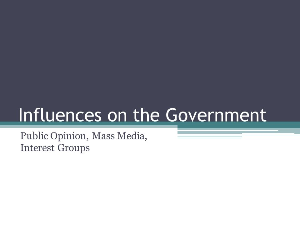 Influences on the Government Public Opinion, Mass Media, Interest Groups
