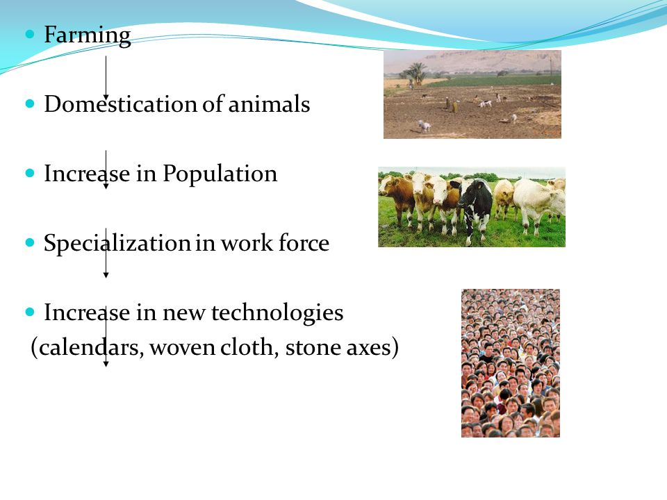 Farming Domestication of animals Increase in Population Specialization in work force Increase in new technologies (calendars, woven cloth, stone axes)