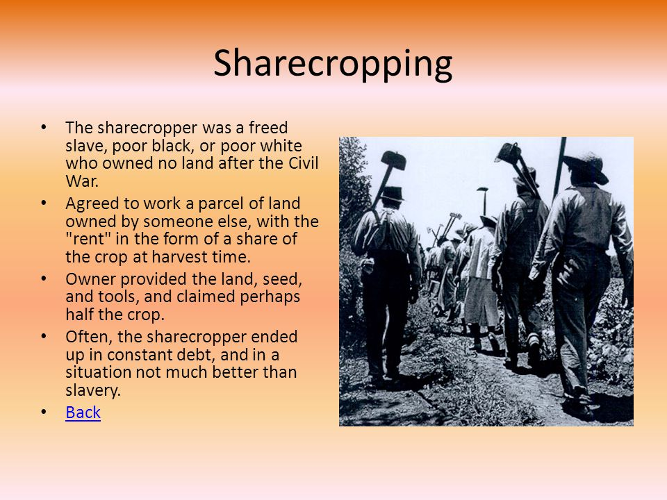 Sharecropping The sharecropper was a freed slave, poor black, or poor white who owned no land after the Civil War.