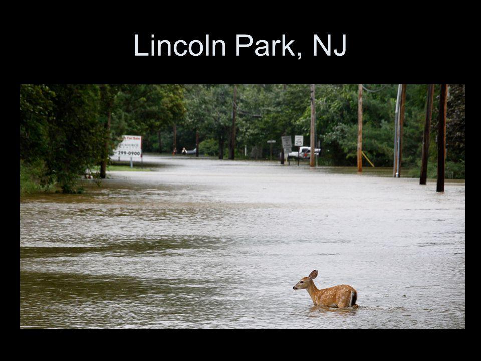Lincoln Park, NJ
