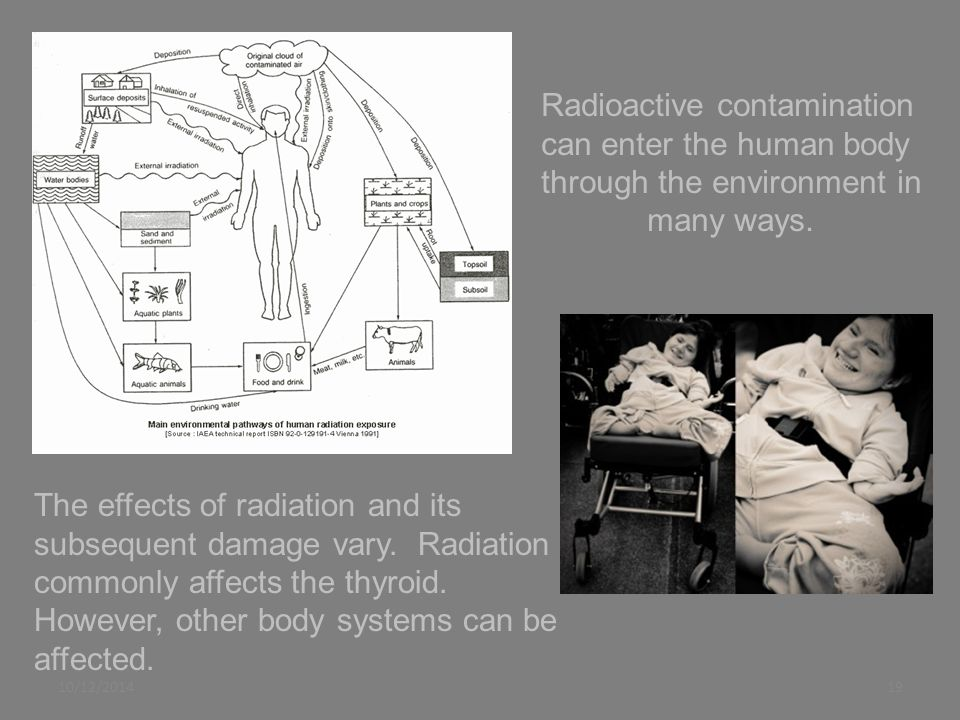 10/12/201419 Radioactive contamination can enter the human body through the environment in many ways.