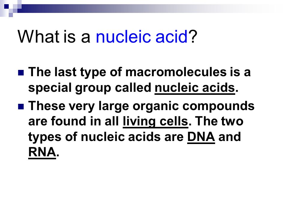What is a nucleic acid? The last type of macromolecules is a special group called nucleic acids. These very large organic compounds are found in all l