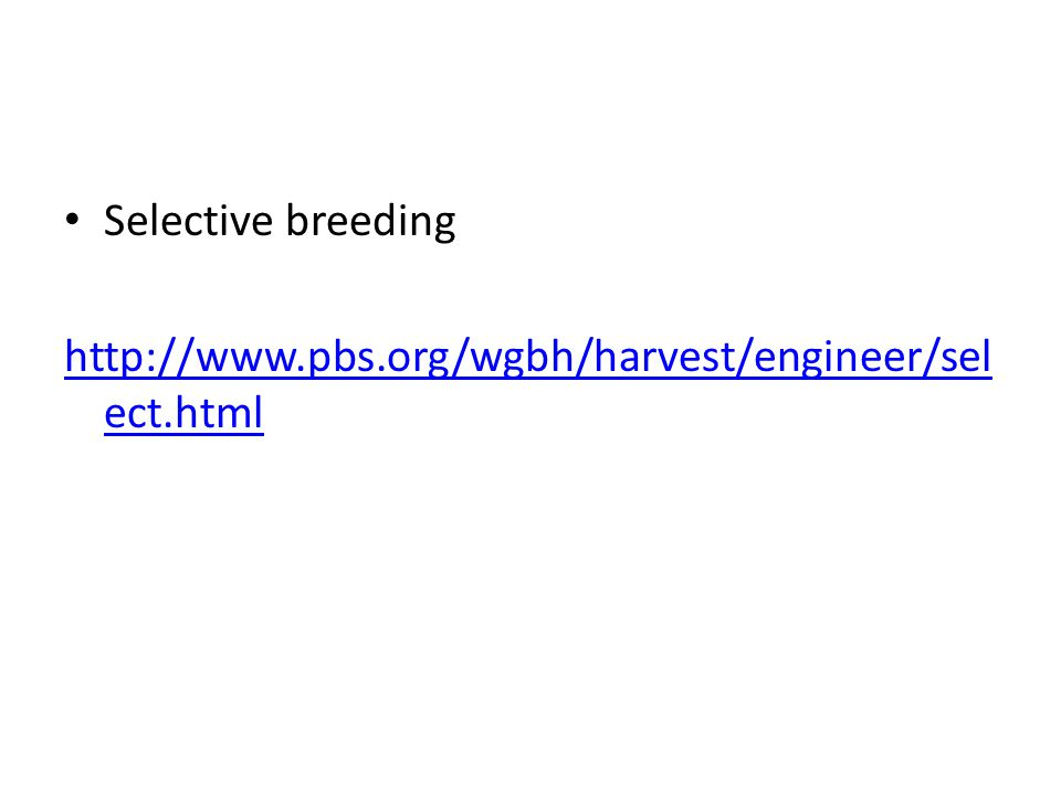 Selective breeding http://www.pbs.org/wgbh/harvest/engineer/sel ect.html