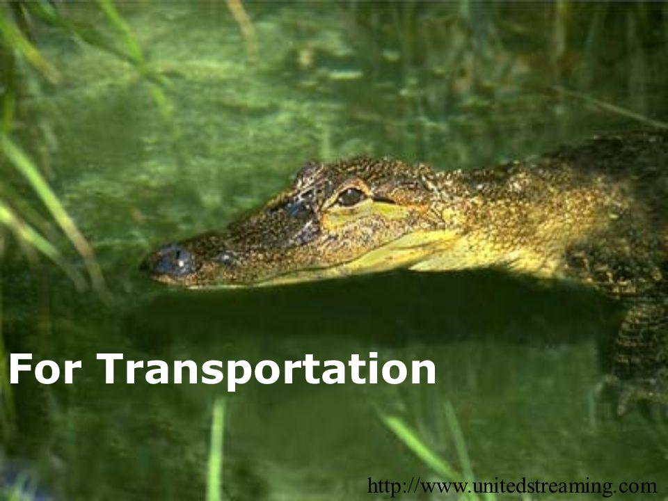 For Transportation http://www.unitedstreaming.com