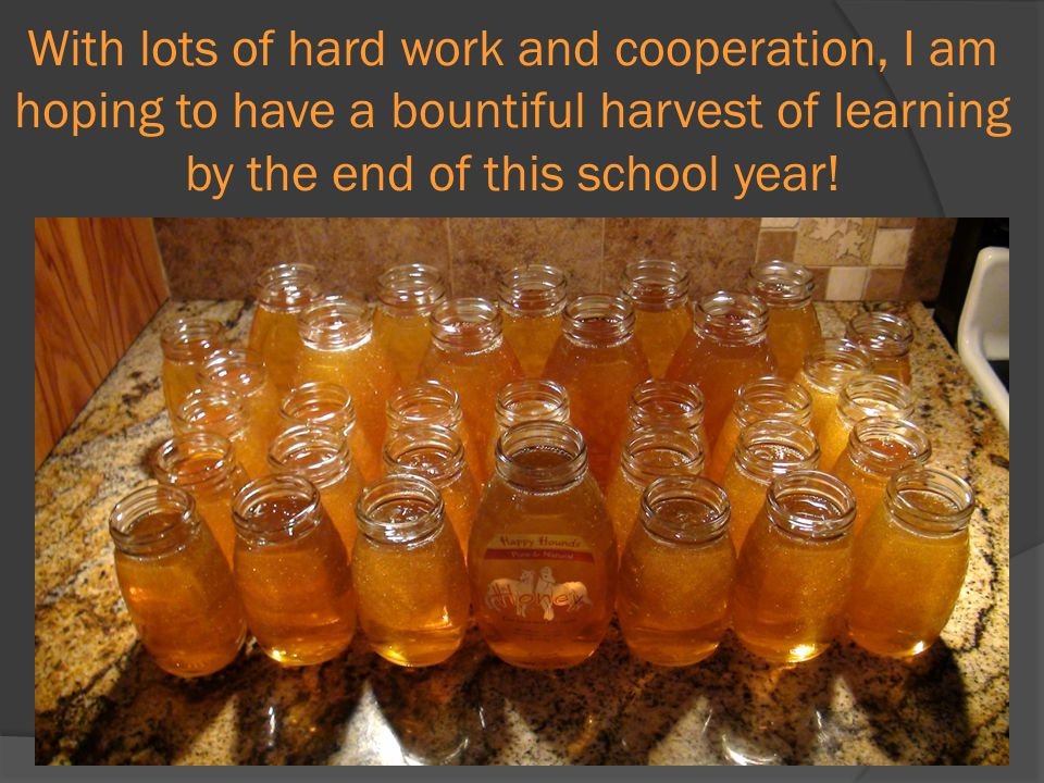 With lots of hard work and cooperation, I am hoping to have a bountiful harvest of learning by the end of this school year!