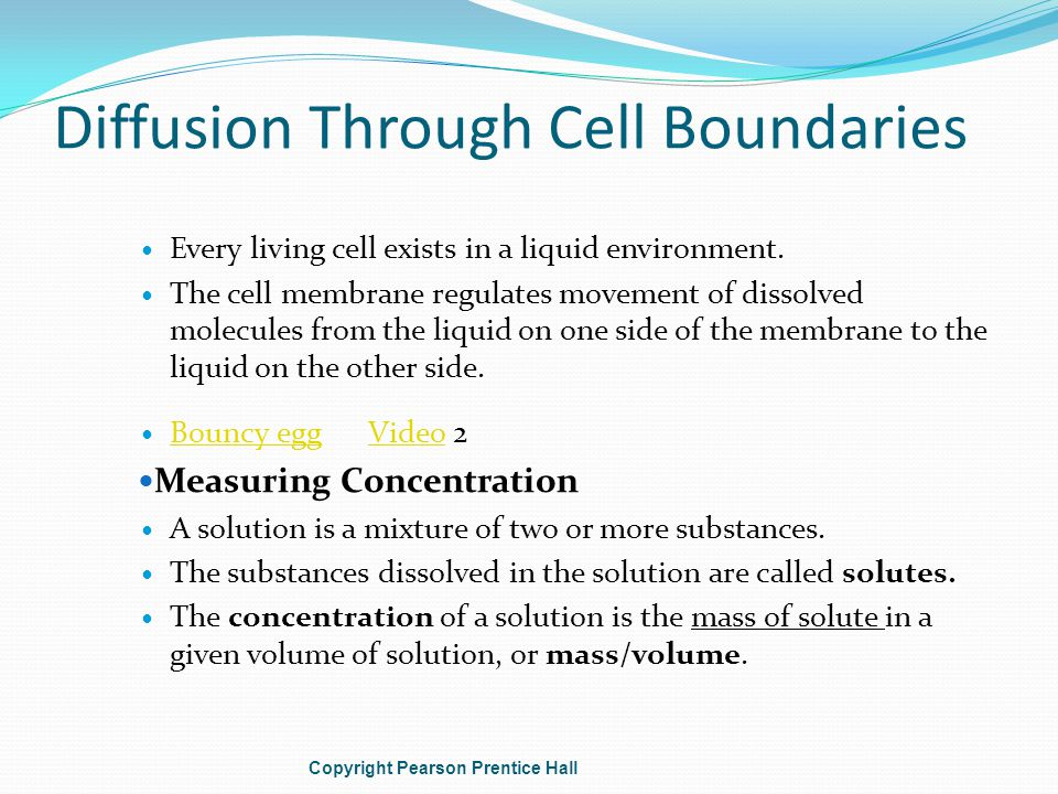 Diffusion Through Cell Boundaries Every living cell exists in a liquid environment.