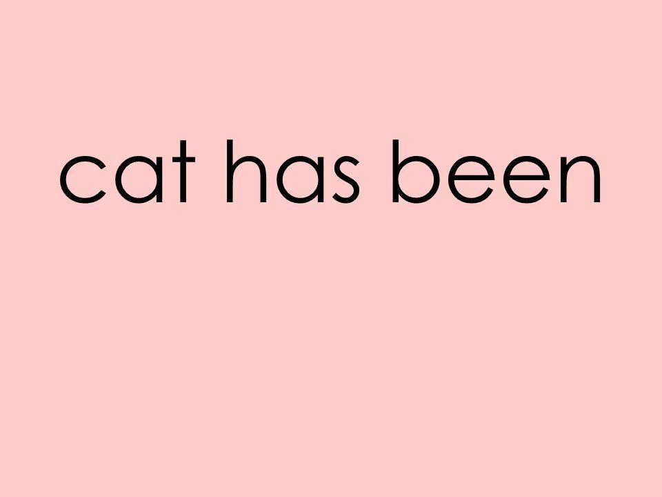 cat has been