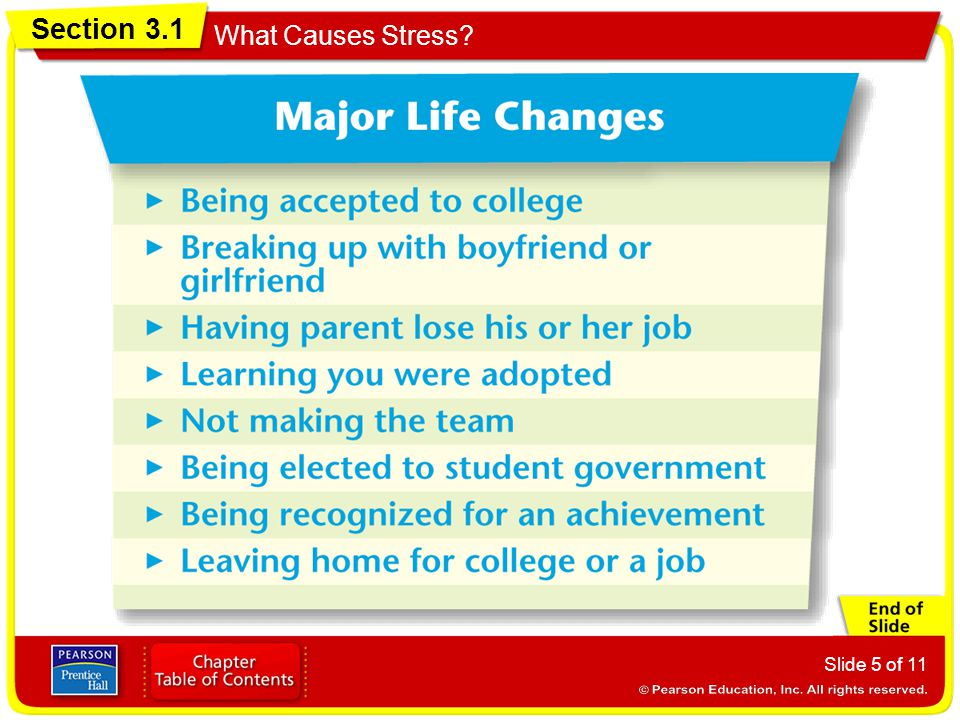 Section 3.1 What Causes Stress? Slide 5 of 11