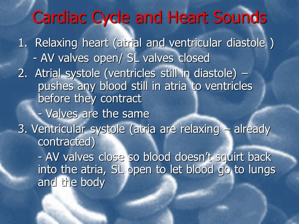 Cardiac Cycle and Heart Sounds 1. Relaxing heart (atrial and ventricular diastole ) - AV valves open/ SL valves closed 2. Atrial systole (ventricles s