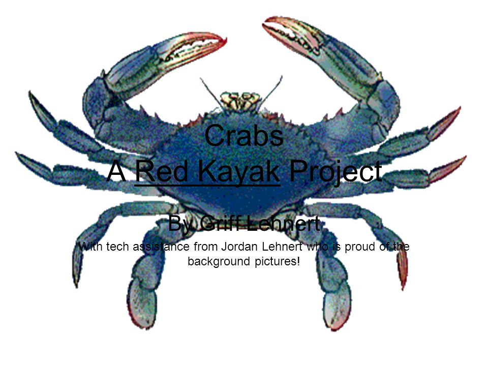 Crabs A Red Kayak Project By Griff Lehnert With tech assistance from Jordan Lehnert who is proud of the background pictures!