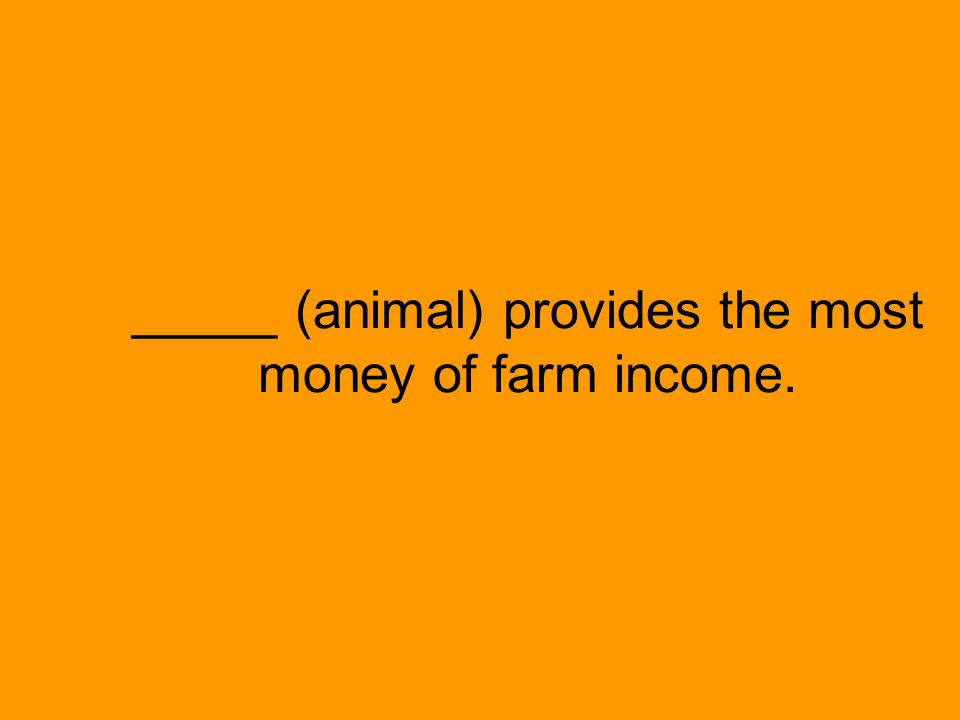 _____ (animal) provides the most money of farm income.