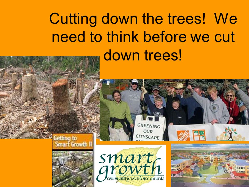 Cutting down the trees! We need to think before we cut down trees!