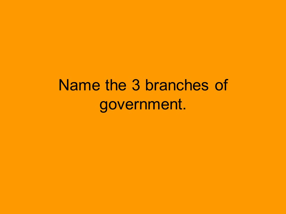 Name the 3 branches of government.