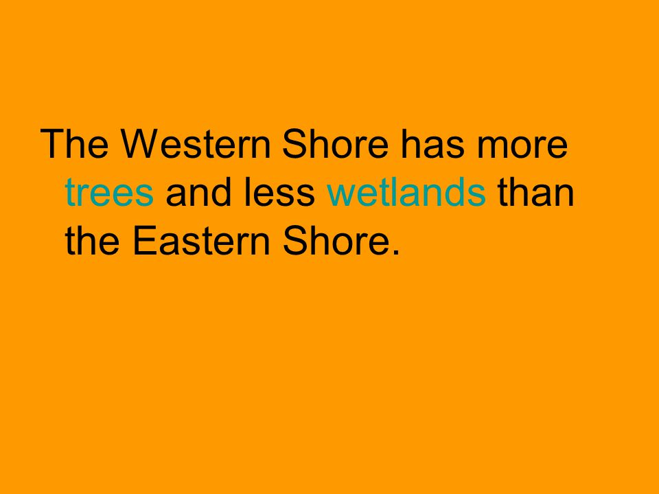 Deforestation is: