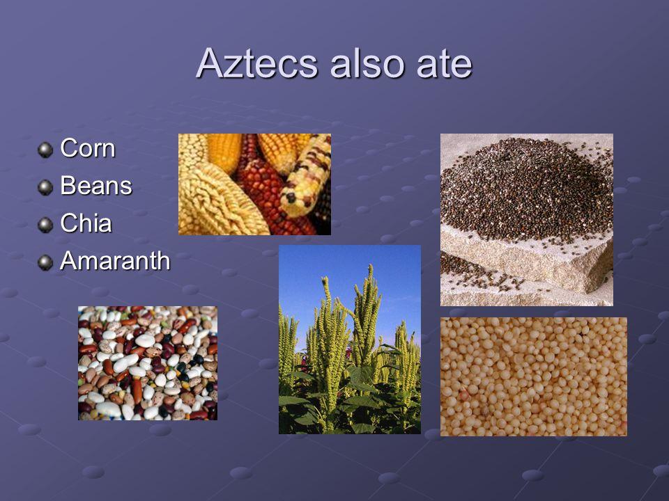 Aztecs also ate CornBeansChiaAmaranth