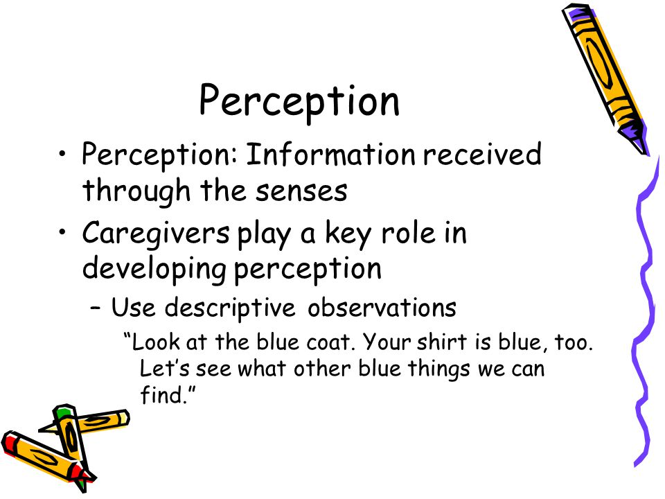 Perception 2 and 3 year olds constantly ask –Why –What's that –How does it work Mr.