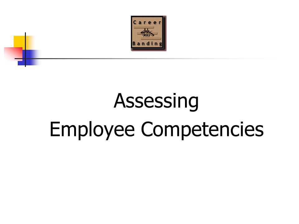 Assessing Employee Competencies