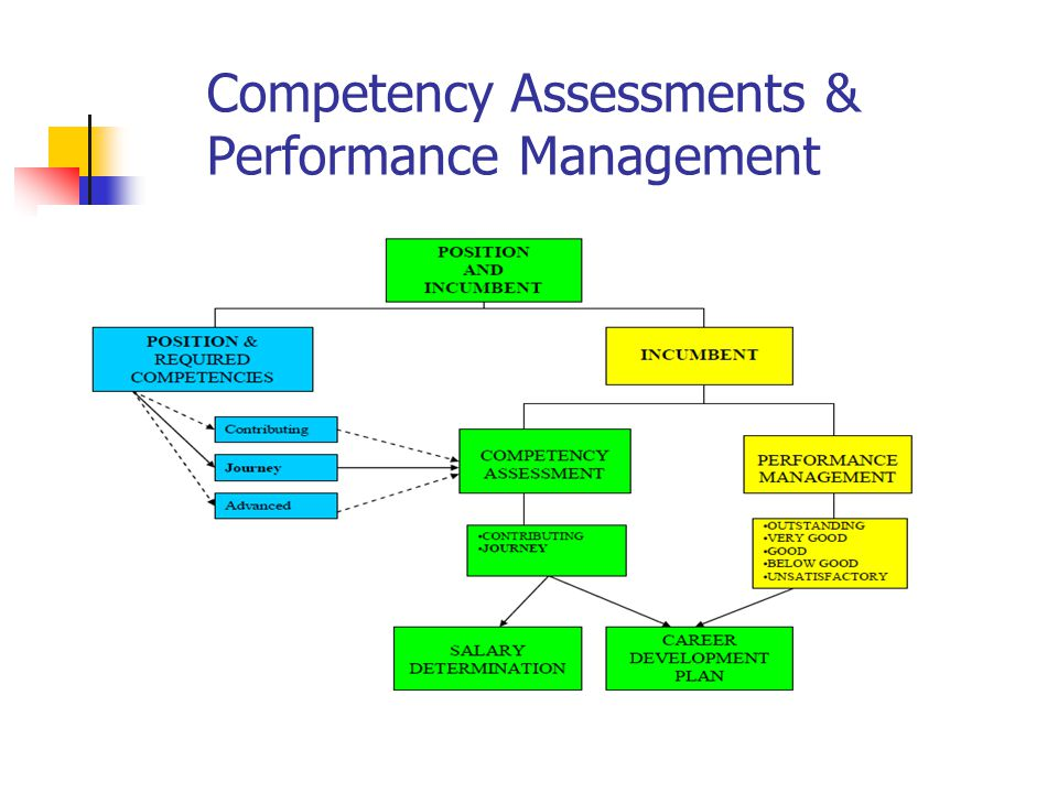 Competency Assessments & Performance Management