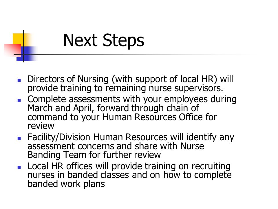 Next Steps Directors of Nursing (with support of local HR) will provide training to remaining nurse supervisors. Complete assessments with your employ