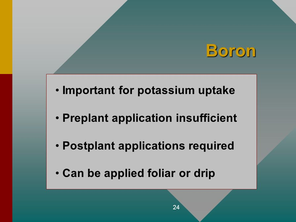 24 Boron Important for potassium uptake Preplant application insufficient Postplant applications required Can be applied foliar or drip