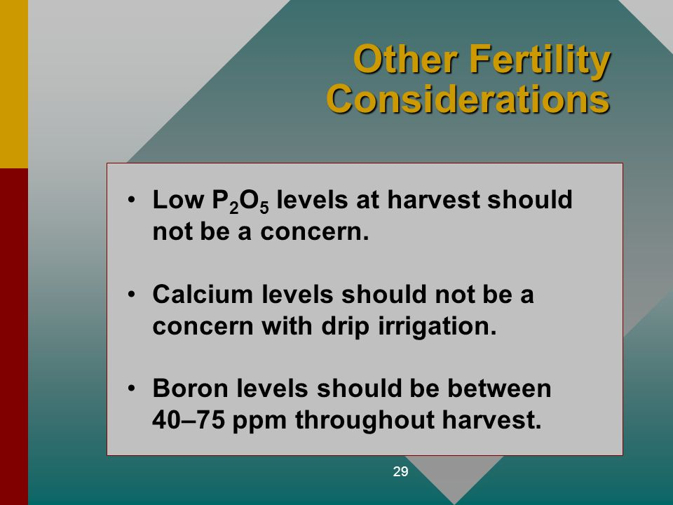 29 Other Fertility Considerations Low P 2 O 5 levels at harvest should not be a concern. Calcium levels should not be a concern with drip irrigation.
