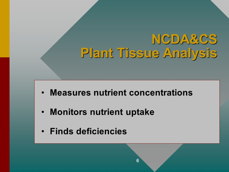 6 NCDA&CS Plant Tissue Analysis Measures nutrient concentrations Monitors nutrient uptake Finds deficiencies