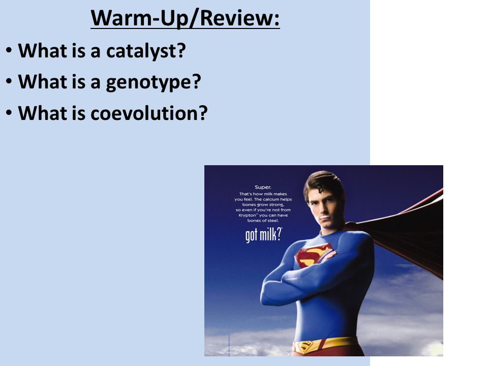 Warm-Up/Review: What is a catalyst What is a genotype What is coevolution