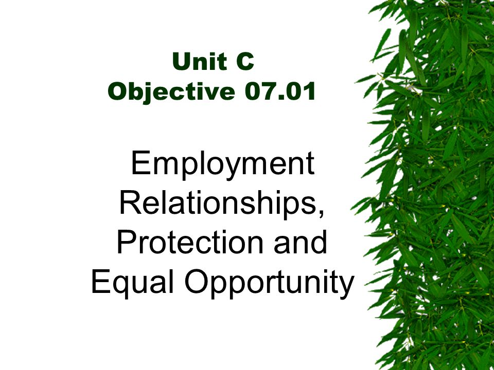 Unit C Objective 07.01 Employment Relationships, Protection and Equal Opportunity