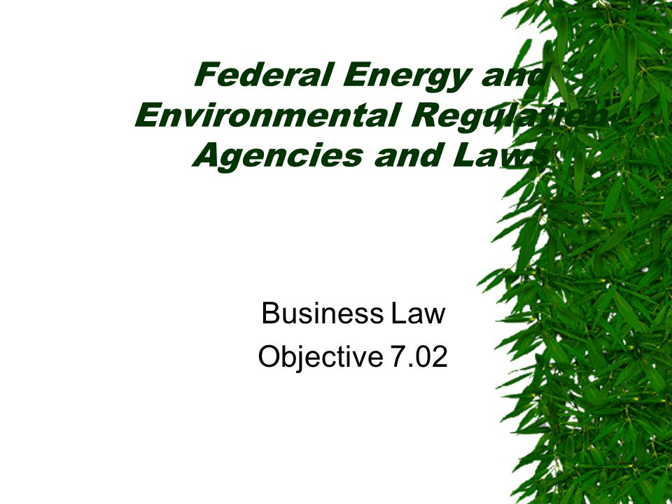 Federal Energy and Environmental Regulation Agencies and Laws Business Law Objective 7.02