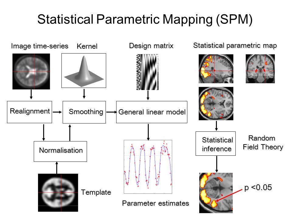 Neural state equation : Electric/magnetic forward model: neural activity  EEG MEG LFP (linear) Neural model: 1 state variable per region bilinear state equation no propagation delays Neural model: 8 state variables per region nonlinear state equation propagation delays fMRI MEG inputs Hemodynamic forward model: neural activity  BOLD (nonlinear) Dynamic Models of Brain Interactions