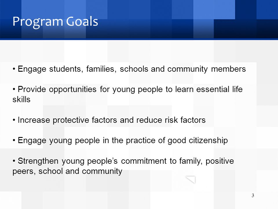 Program Goals Engage students, families, schools and community members Provide opportunities for young people to learn essential life skills Increase protective factors and reduce risk factors Engage young people in the practice of good citizenship Strengthen young people's commitment to family, positive peers, school and community 3