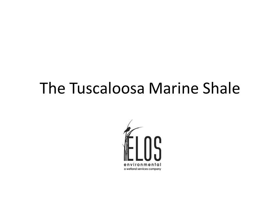 The Tuscaloosa Marine Shale
