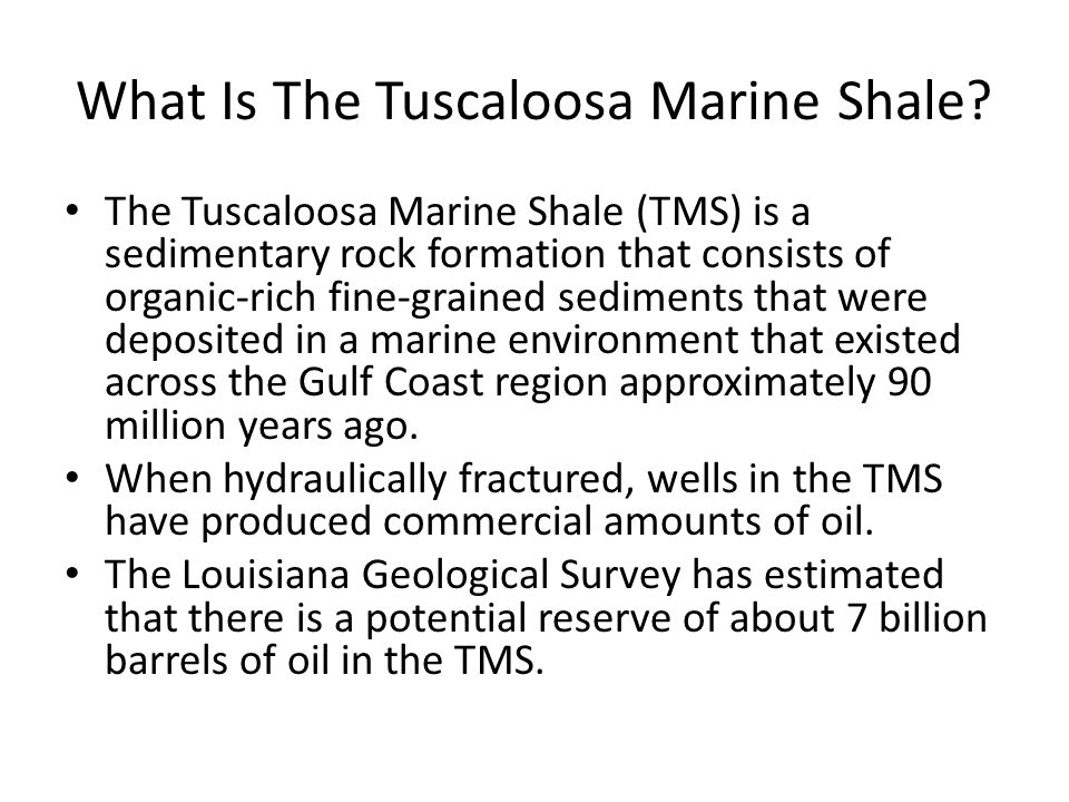 What Is The Tuscaloosa Marine Shale.