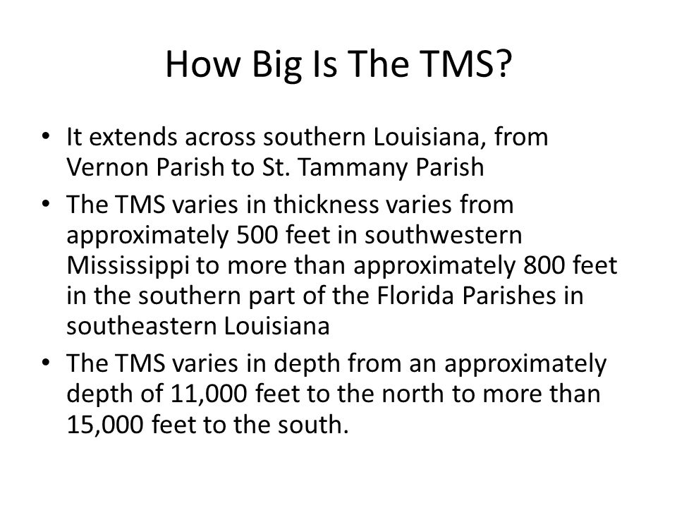 National View Of The TMS