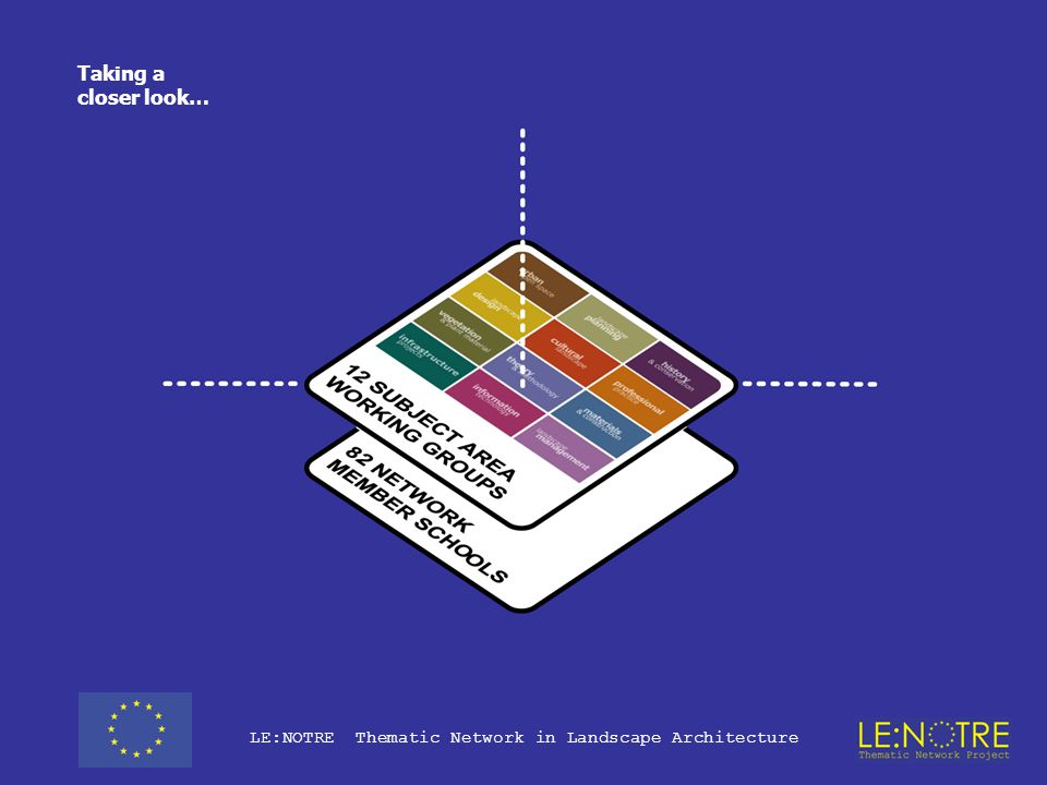 Role of the Working Groups in the overall project structure
