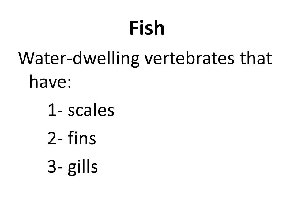 Fish Water-dwelling vertebrates that have: 1- scales 2- fins 3- gills
