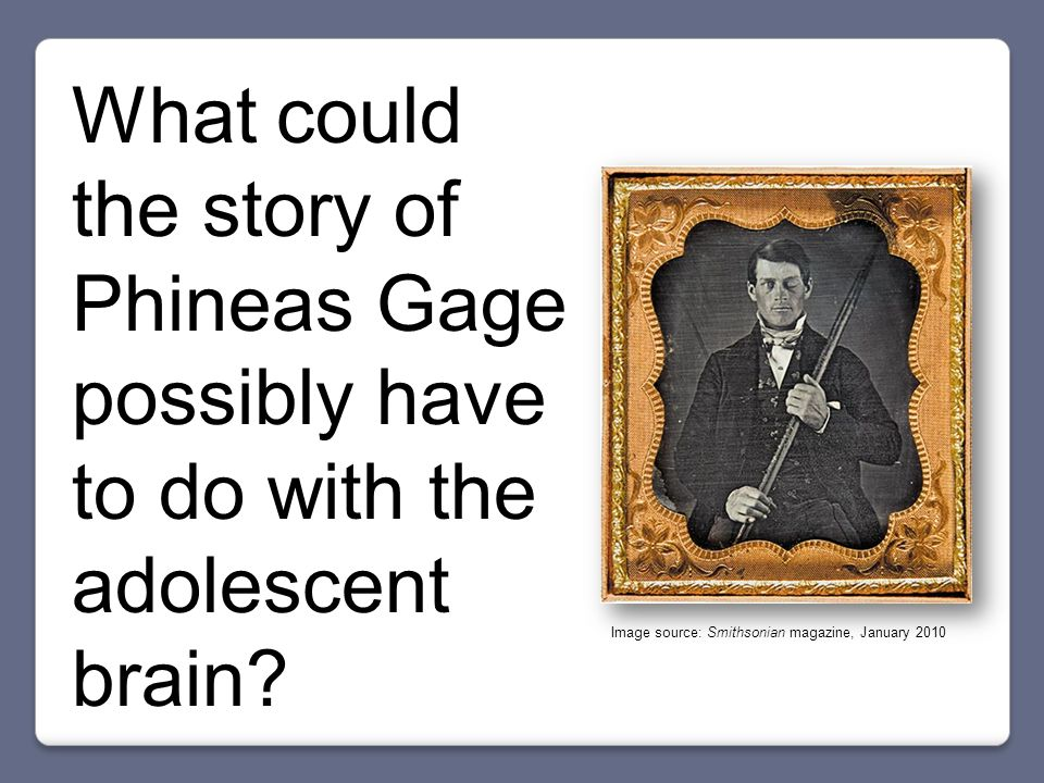 What could the story of Phineas Gage possibly have to do with the adolescent brain.