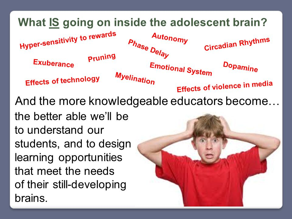 What IS going on inside the adolescent brain.