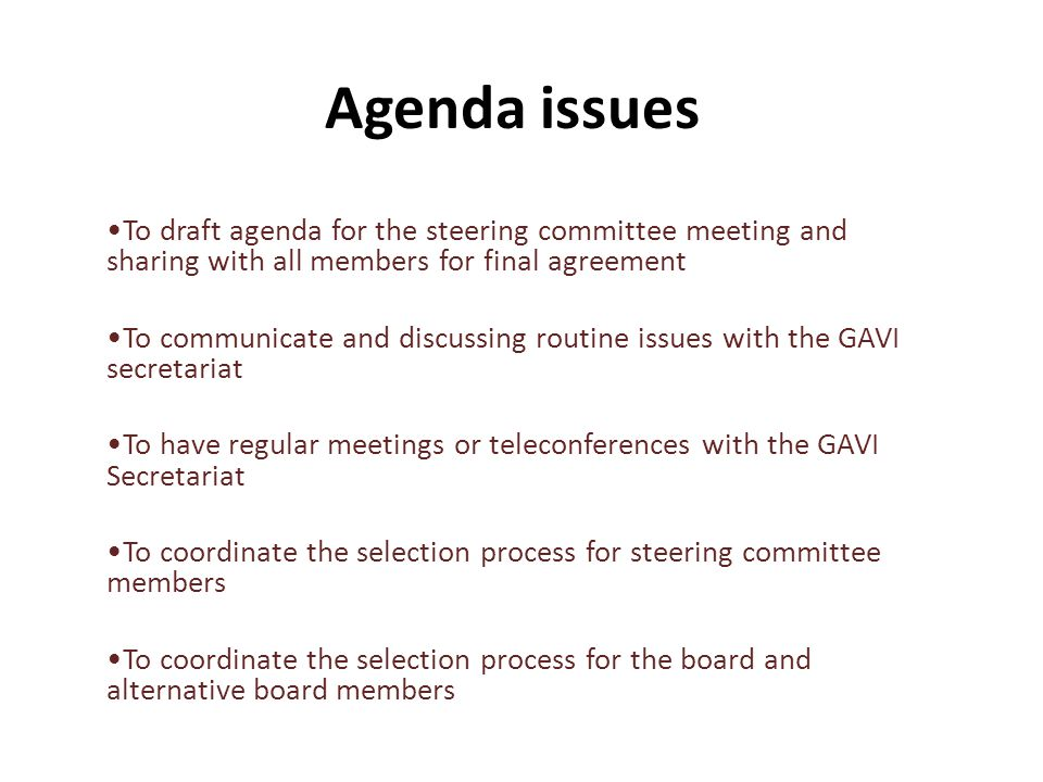 Agenda issues To draft agenda for the steering committee meeting and sharing with all members for final agreement To communicate and discussing routine issues with the GAVI secretariat To have regular meetings or teleconferences with the GAVI Secretariat To coordinate the selection process for steering committee members To coordinate the selection process for the board and alternative board members