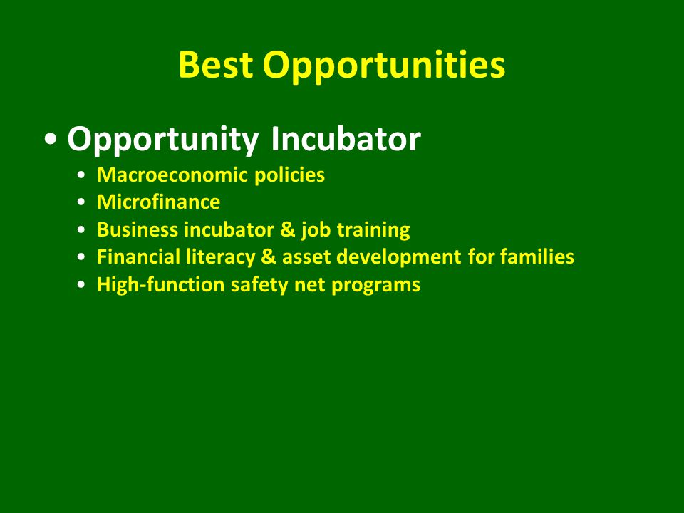 Best Opportunities Opportunity Incubator Macroeconomic policies Microfinance Business incubator & job training Financial literacy & asset development for families High-function safety net programs
