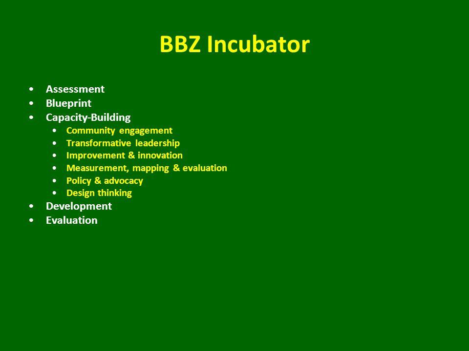 BBZ Incubator Assessment Blueprint Capacity-Building Community engagement Transformative leadership Improvement & innovation Measurement, mapping & evaluation Policy & advocacy Design thinking Development Evaluation
