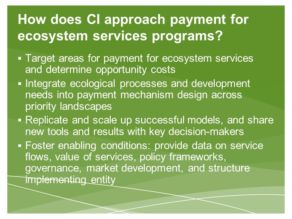 How does CI approach payment for ecosystem services programs.