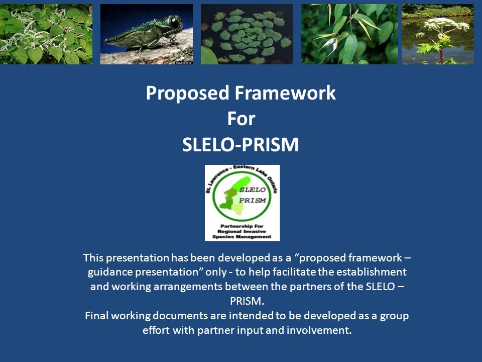 Proposed Framework For SLELO-PRISM This presentation has been developed as a proposed framework – guidance presentation only - to help facilitate the establishment and working arrangements between the partners of the SLELO – PRISM.