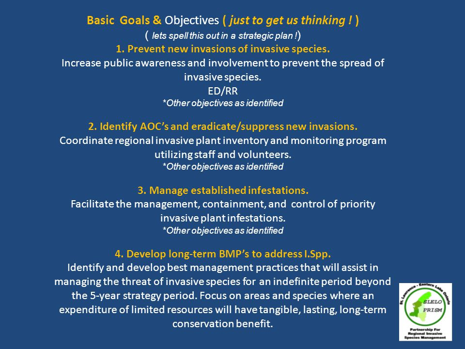 Basic Goals & Objectives ( just to get us thinking .