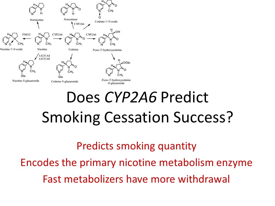 Does CYP2A6 Predict Smoking Cessation Success? Predicts smoking quantity Encodes the primary nicotine metabolism enzyme Fast metabolizers have more wi