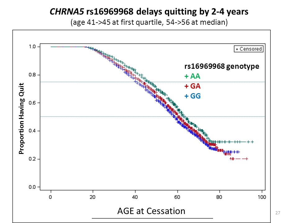 CHRNA5 rs16969968 delays quitting by 2-4 years (age 41->45 at first quartile, 54->56 at median) Age of Quitting Smoking 27 Proportion Having Quit rs16969968 genotype + AA + GA + GG AGE at Cessation