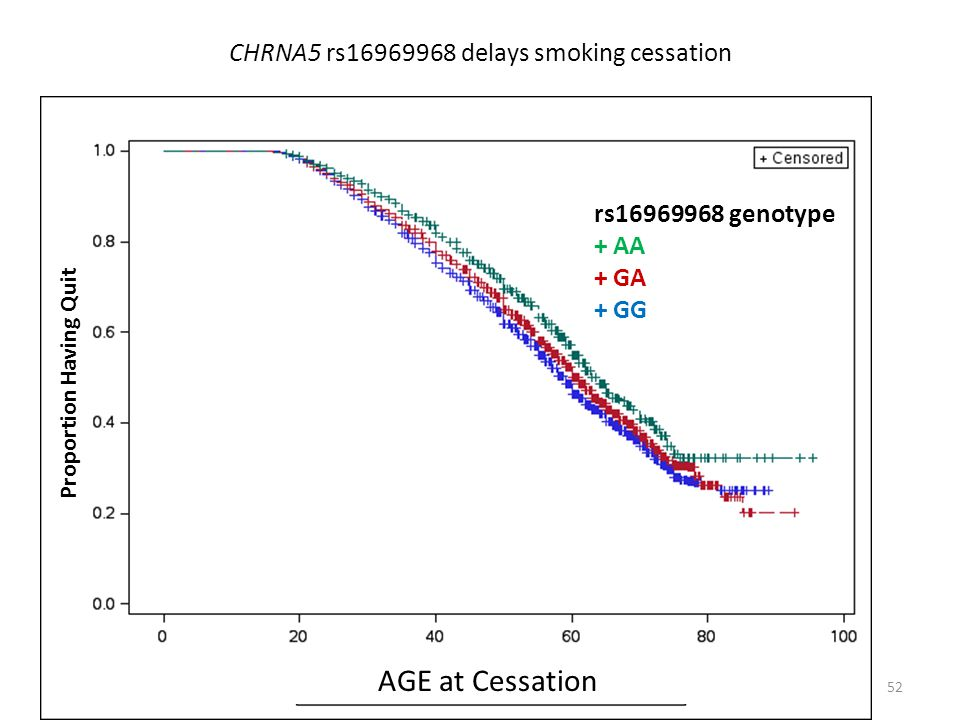 CHRNA5 rs16969968 delays smoking cessation Age of Quitting Smoking 52 Proportion Having Quit rs16969968 genotype + AA + GA + GG AGE at Cessation