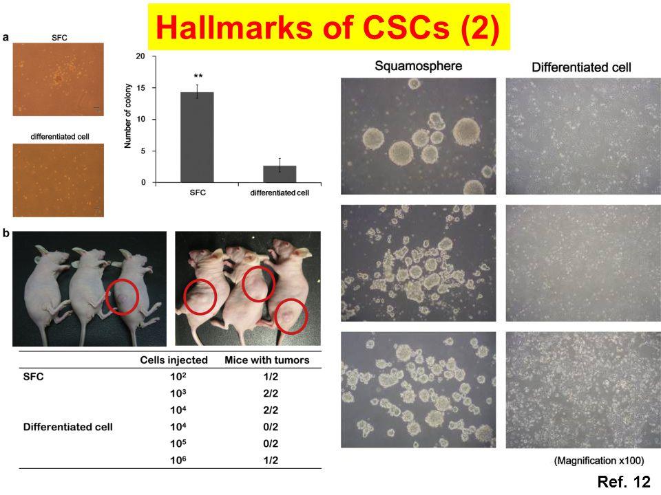 Hallmarks of CSCs (2) Ref. 12