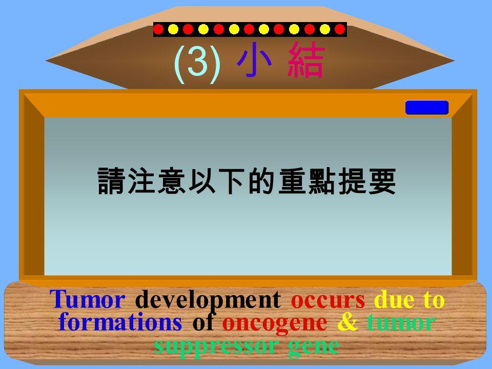 (3) 小 結 Tumor development occurs due to formations of oncogene & tumor suppressor gene 癌化理論 → 標準教條: 細胞循環中,原來正常的腫瘤致癌 基因與抑癌基因發生突變而失控; 造成致癌基因過度活化及抑癌基因 失去功能 請注意以下的重點提要